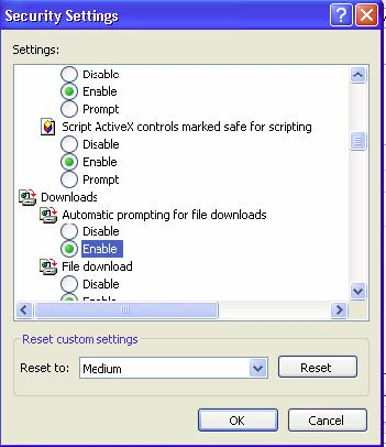 Picture of the open security settings window with the enable option highlighted under the downloads section